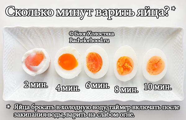 как есть белок чтобы похудеть