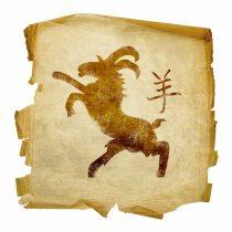 Символ года козы