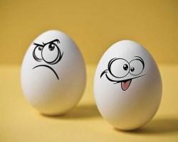 Учимся правильно варим яйца