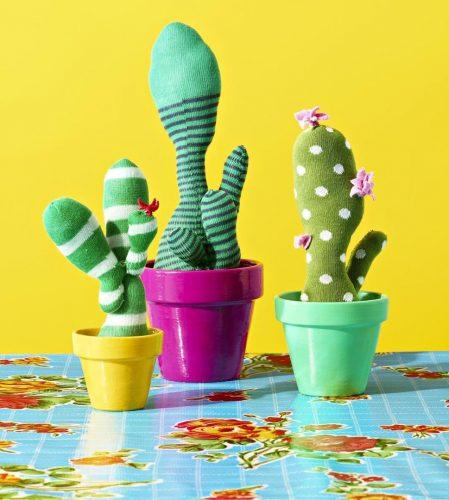 Милые кактусы