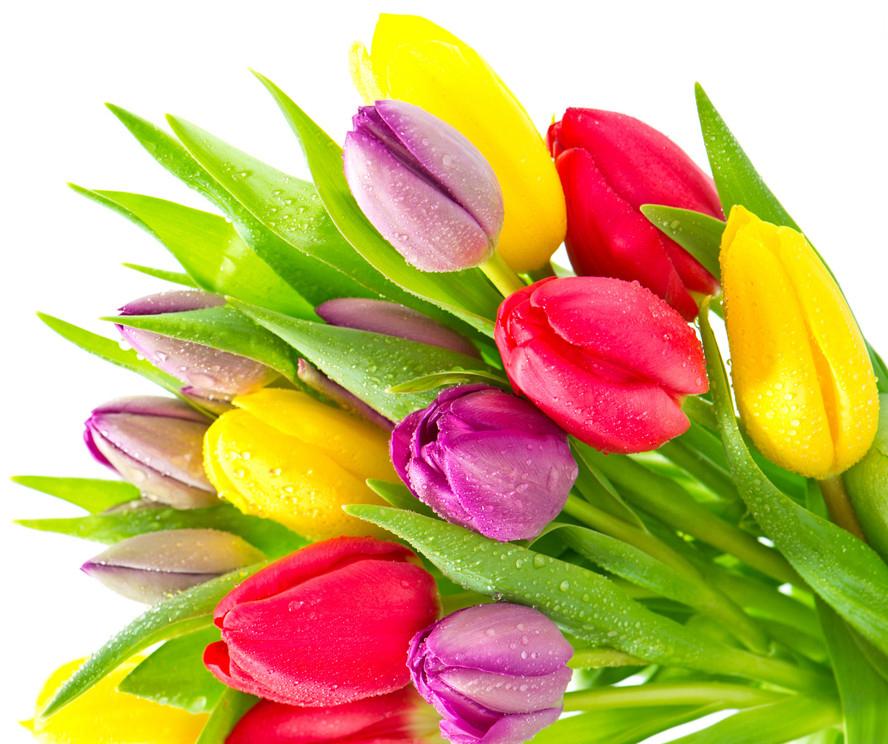 Красивый букет цветов за 1000 рублей