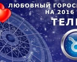 Гороскоп для Тельца на 2016 год: мужчина и женщина